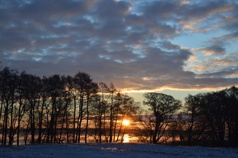 Saulėtekis Neringoje
