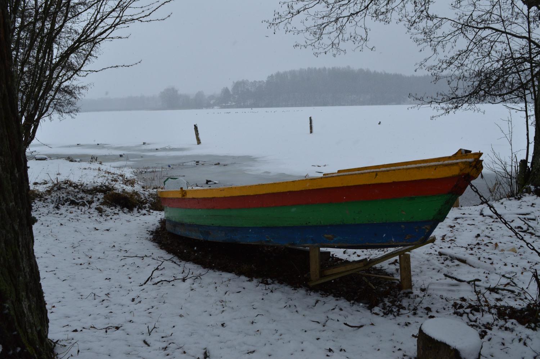 spalvota medinė valtis