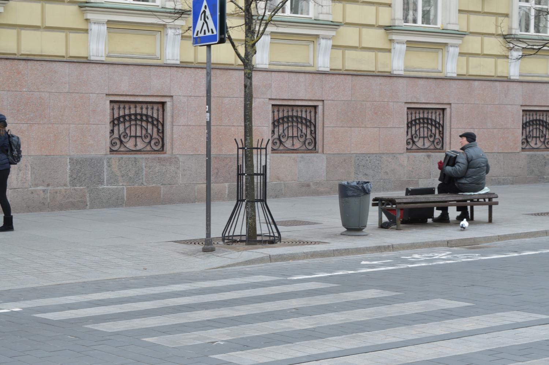 Gatvės akordeonistas