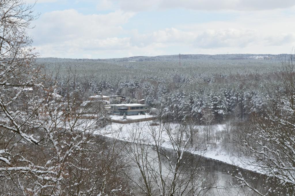 Balti Valakampiai