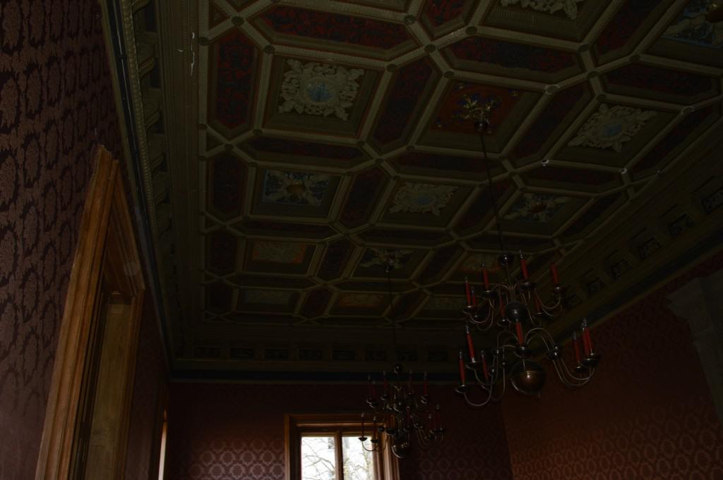 Trakų vokės dvaro lubos
