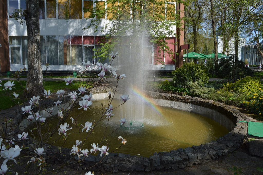 Fontanas su vaivorykšte