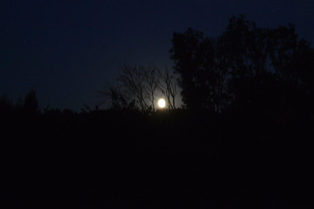 Mėnulio šešėlis