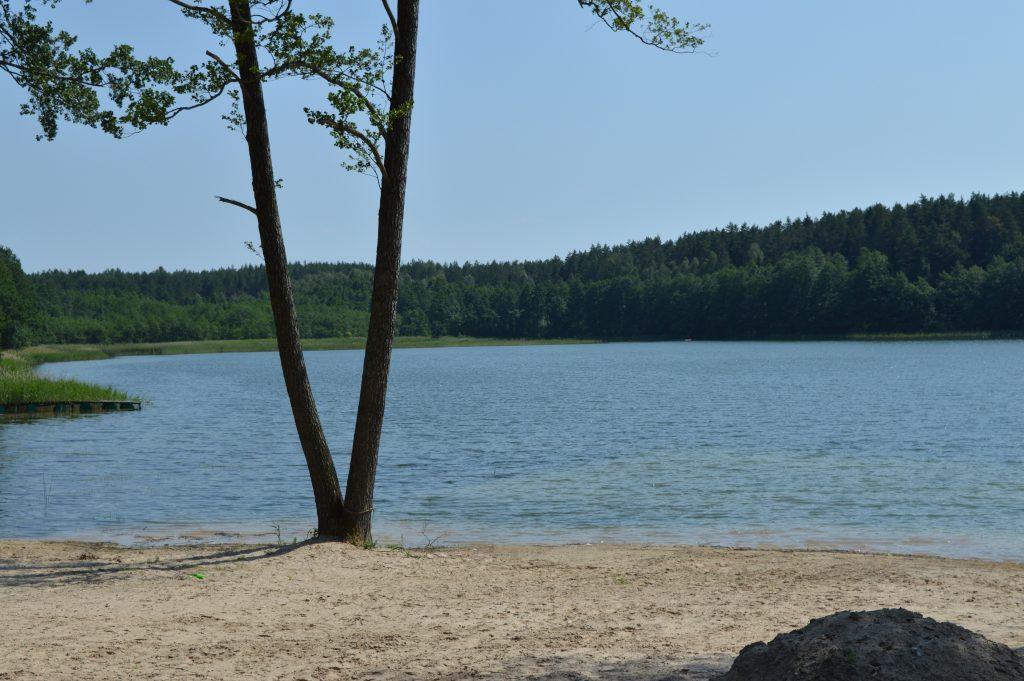Liškiavio ežero pakrantė